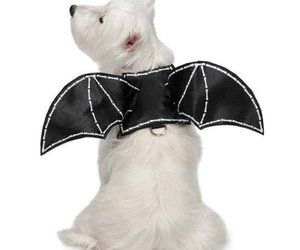 Produktbild: BAT GLOW WING HARNESS COSTUMES