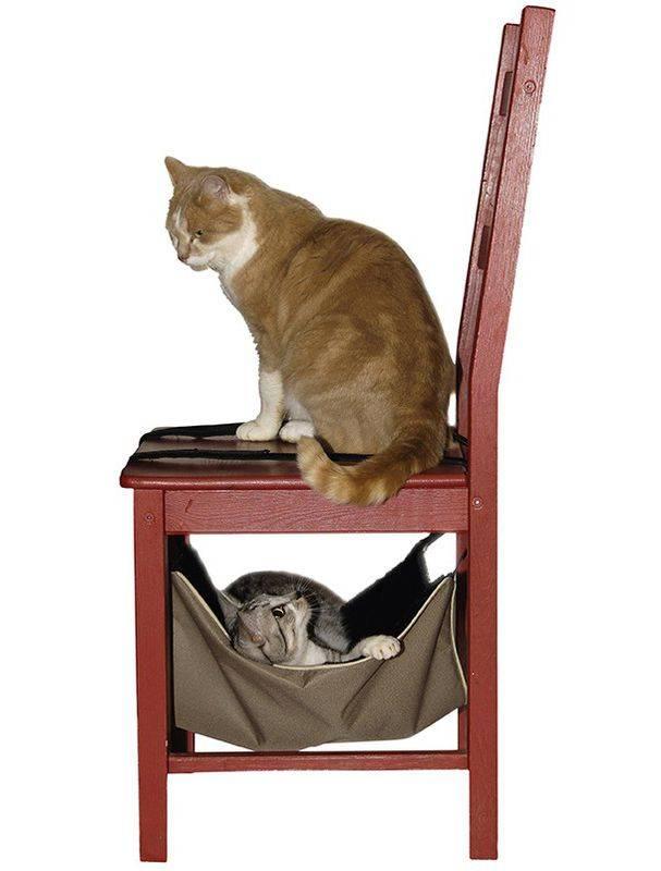 Produktbild: Cat hammock calin