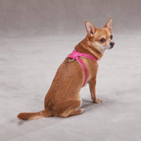 Produktbild: Gemstone Sparkle Harness Rosa