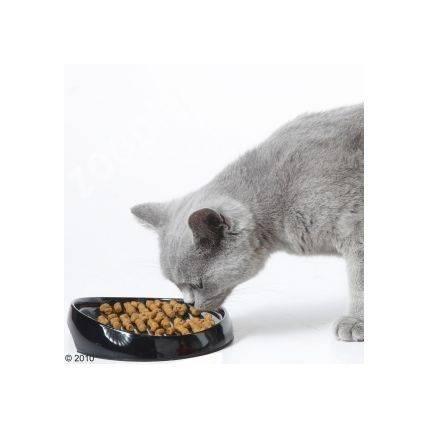 Produktbild: matskål Whisker 2