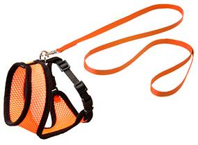 Original Harness Orange Med Svart Söm