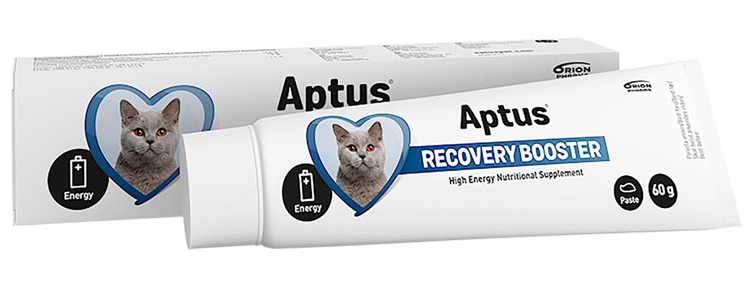 Recovery Booster Cat - Näringspasta