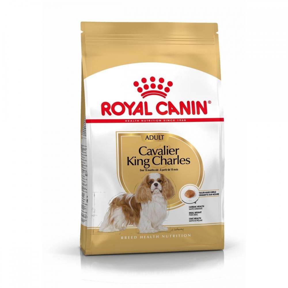 Royal Canin Cavalier King Charles Adult 7